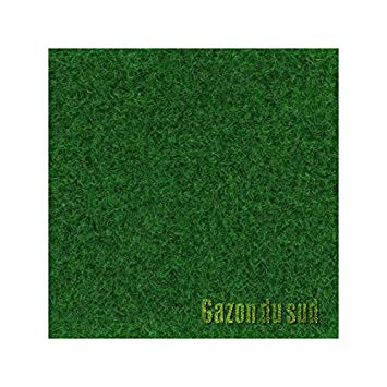 gazon artificiel largeur 1 5m