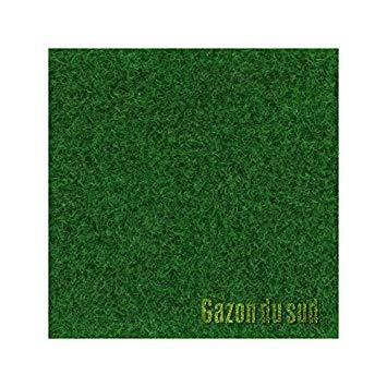 gazon synthetique 2 m de large