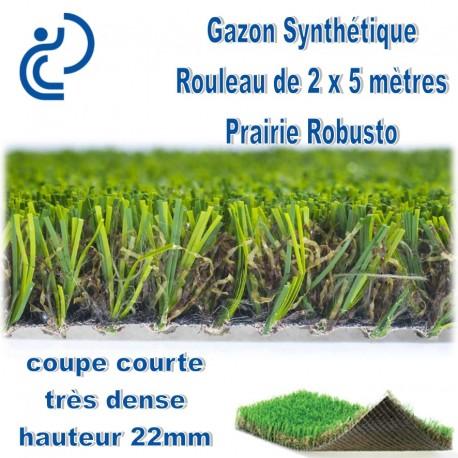 gazon synthetique 2mx5m