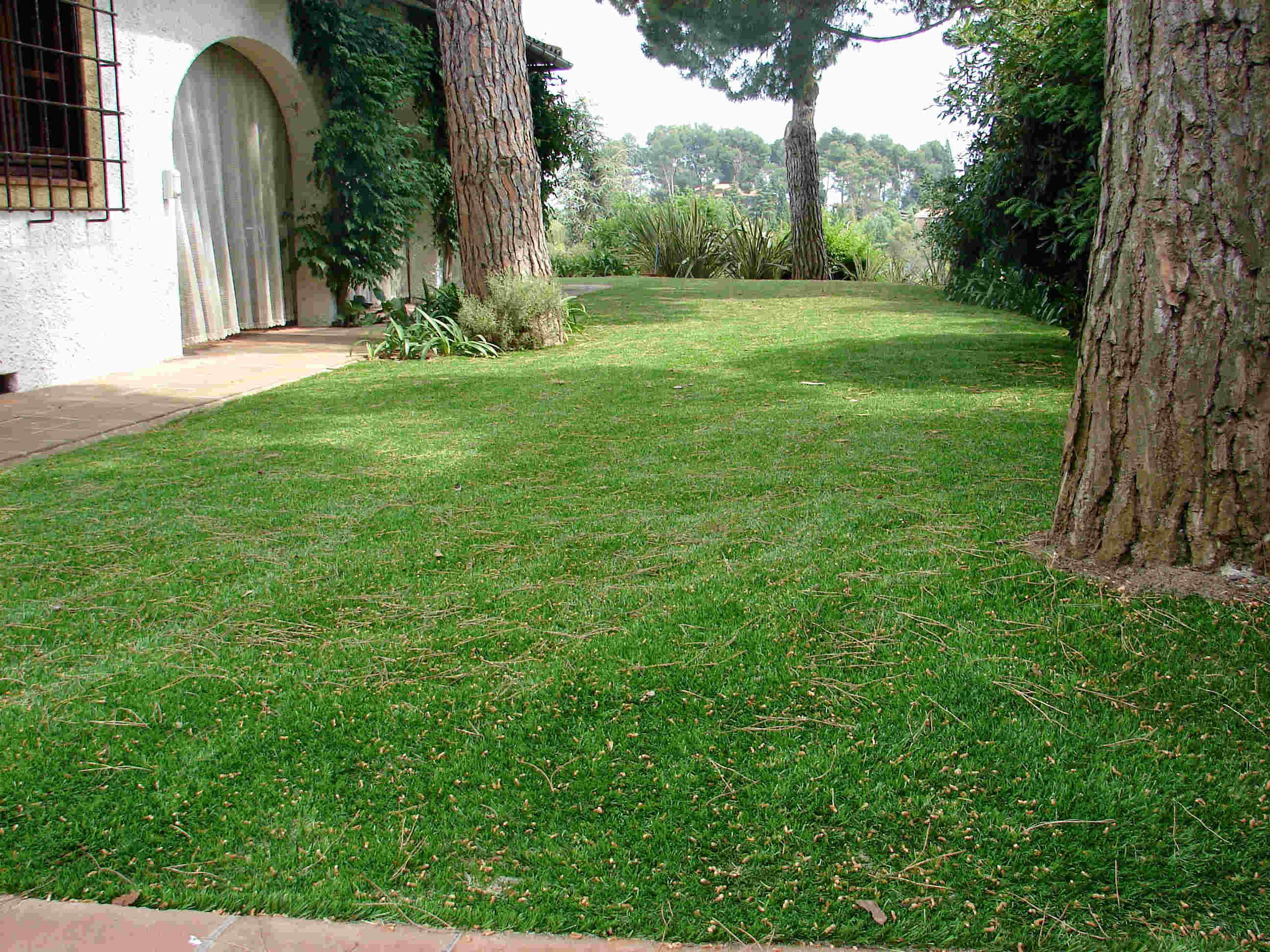 pelouse synthetique ales
