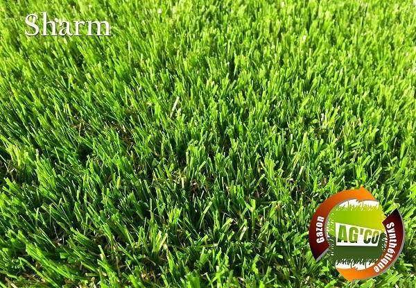 pelouse synthetique de troisieme et quatrieme generations