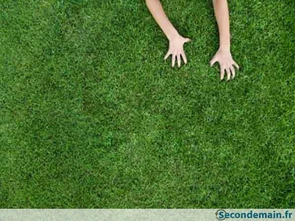 pelouse synthetique occasion