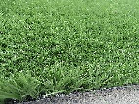 pelouse synthetique sur leboncoin