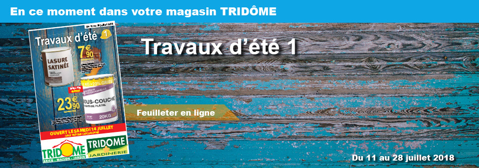 pelouse synthetique tridome narbonne