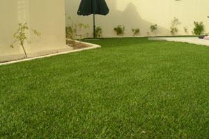 pelouse synthetique tunisie