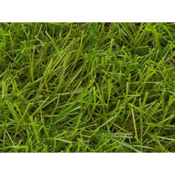 pelouse synthetique wimbledon